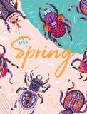 Frühlingsgrußkarte mit dekorativen Käfern Auch im corel abgehobenen Betrag Lizenzfreie Stockfotografie