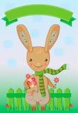 Frühlingsgrußkarte mit einem Kaninchen, das ein Gänseblümchen hält Stockfotografie