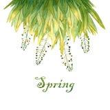 Frühlingsgrußkartenschablone Lizenzfreie Stockfotos