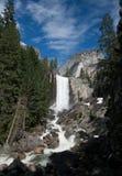 Frühlingshafte Fälle in Yosemite Lizenzfreie Stockfotos