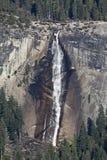 Frühlingshafte Fälle Yosemite Stockbild