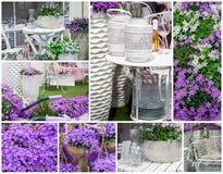 Frühlingshausgarten Stockfotografie