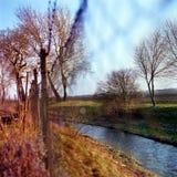 Frühlingsherbstzaunnatur trauquil Szenen-Strombäume stockbilder