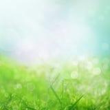 Frühlingshintergrund Lizenzfreies Stockbild