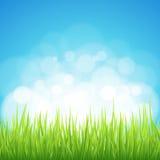 Frühlingshintergrund stock abbildung