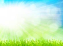 Frühlingshintergrund Stockbild