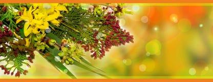 Frühlingshintergrund in den warmen Farben Lizenzfreies Stockfoto
