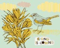 Frühlingshintergrund mit Krokussen und Vogel Stockfotos