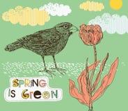 Frühlingshintergrund mit Tulpe und Vogel Stockbild