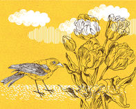 Frühlingshintergrund mit Tulpe und Vogel Lizenzfreie Stockbilder
