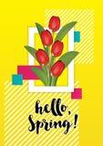 Frühlingsillustration mit Tulpen innerhalb sie lizenzfreie abbildung