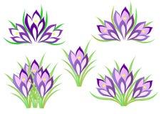Frühlingskrokusse vektor abbildung