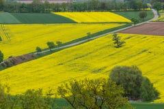 Frühlingslandschaft Stockbilder
