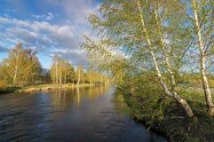 Frühlingslandschaft in dem Ural-Fluss mit Birke, Russland Stockfotos