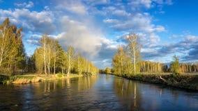 Frühlingslandschaft in dem Ural-Fluss mit Birke, Russland Stockbild