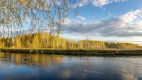 Frühlingslandschaft in dem Ural-Fluss mit Birke, Russland Stockbilder