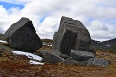 Frühlingslandschaft entlang der Vater-Troy-` s Spur in Neufundland Kanada, nahe Flatrock lizenzfreie stockfotos