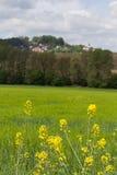 Frühlingslandschaft im Bayern Stockfotografie