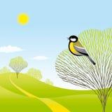 Frühlingslandschaft mit einem Vogel Stockfotografie