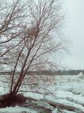 Frühlingslandschaft mit Fluss Stockfotos