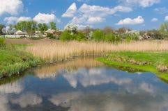 Frühlingslandschaft mit kleinem Fluss Stockfotografie