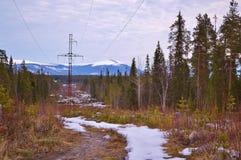 Frühlingslandschaft mit Wald und Bergen Stockbilder