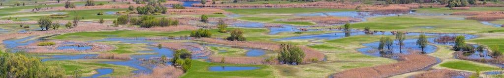 Frühlingslandschaft, Panorama, Fahne - überschwemmen Sie in River Valley Stockbilder