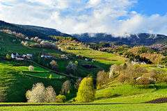 Frühlingslandschaft in Slowakei Lizenzfreie Stockfotografie