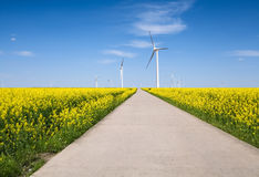 Frühlingslandschaft und -Windpark Stockbild
