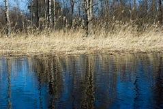 Frühlingslandschaft, Vuoksi Fluss lizenzfreies stockfoto