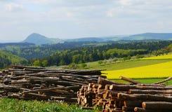 Frühlingslandschafts-Deutschland-Gebirgsfeldwald Lizenzfreie Stockbilder