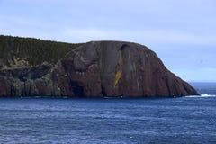 Frühlingsmeerblick entlang der Küste von Neufundland Kanada, nahe Flatrock lizenzfreie stockfotografie