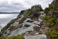 Frühlingsmeerblick entlang der Vater-Troy-` s Spur in Neufundland Kanada, nahe Flatrock stockfotos