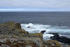 Frühlingsmeerblick entlang der Vater-Troy-` s Spur in Neufundland Kanada, nahe Flatrock stockfotografie