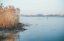 Frühlingsmorgenübung durch den Fluss Lizenzfreie Stockfotos