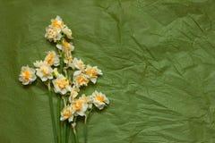 Frühlingsnarzissen bouqet auf dem grünen Kraftpapierhintergrund Lizenzfreie Stockfotografie