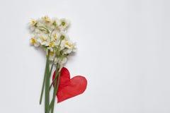 Frühlingsnarzissen bouqet auf dem weißen Hintergrund mit rotem Papier Stockfotografie