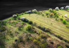 Frühlingsobstgärten nahe braunem Feld, Vogelperspektive Stockfotografie
