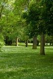 Frühlingspark Stockfoto