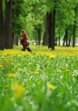 Frühlingspark Lizenzfreie Stockbilder
