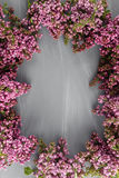 Frühlingsrahmen mit Blume der Flieder Feld von schönen Blumen auf einer grauen Holzoberfläche Weinlesetonen Mit Kopieraum Lizenzfreie Stockfotografie