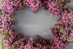 Frühlingsrahmen mit Blume der Flieder Feld von schönen Blumen auf einer grauen Holzoberfläche Weinlesetonen Mit Kopieraum Stockfoto