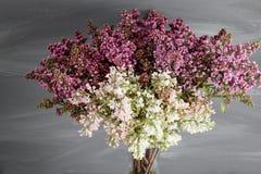 Frühlingsrahmen mit Blume der Flieder Schöne Blumen auf einer grauen Holzoberfläche Weinlesetonen Mit Kopieraum Lizenzfreies Stockbild