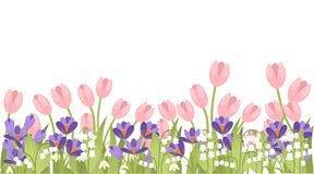 Fr?hlingsrosa Tulpe, purpurroter Krokus und wei?e Convallaria majalis Gr?nes Blumenmuster, Gras Konzept f?r Gru?karte oder lizenzfreie abbildung