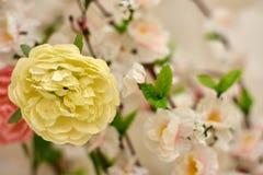 Frühlingsrosaplastik-Kirschblüte-Blume, die einen Garten verziert stockfoto