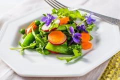 Frühlingssalat mit Erbsen und Karotten Lizenzfreies Stockbild