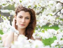 Frühlingsschönheit lizenzfreies stockfoto