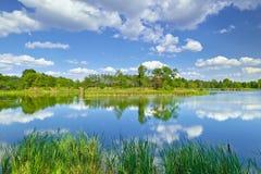 Frühlingssommerlandschaftsblauer Himmel bewölkt Flussteich-Grünbäume Lizenzfreie Stockfotos