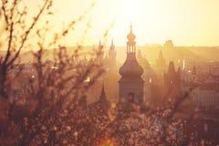 Frühlingssonnenaufgang in Prag Stockbilder