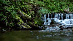 Frühlingsstromflüsse auf kleine Kaskaden stock footage